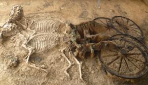 Karanovo horse burials