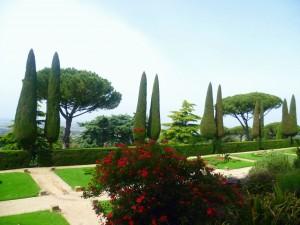 Gardens 9
