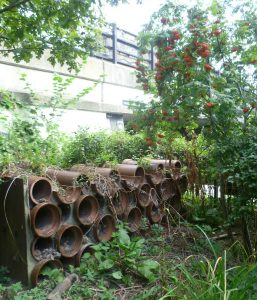 13 Thornhill Bridge and insect homes